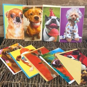 15 brand new greeting cards funny animals